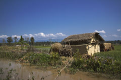 Typical tharu house, Bardia, Nepal Stock Photo