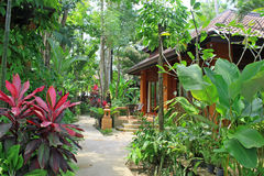 Tropical Villa Luxury Cottage home architecture India. Typical Tropical Country Villa Cottage India with designer landscaping, architecture and plantation royalty free stock photos