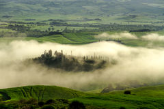 Typical Tuscan beautiful view. Lies morning mist over the river valley Orcia (Val dOrcia Royalty Free Stock Images