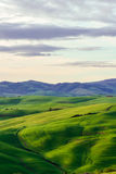 Typical Tuscan beautiful view. Stock Photo