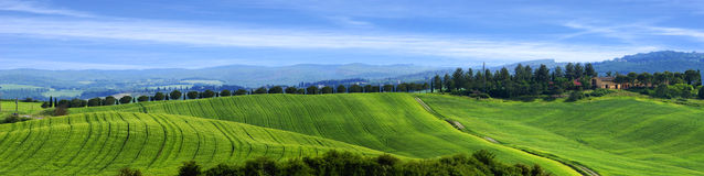 Typical Tuscan countryside on a summer day, Italy. Royalty Free Stock Images