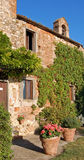Typical Tuscan Farmhouse. With ivy and vases of flowers stock photography