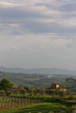 Typical Tuscan farmhouse with vineyard and olive trees portrait Royalty Free Stock Images
