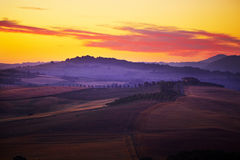 Typical tuscan landscape. Image of typical tuscan landscape royalty free stock photo