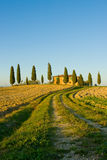 Typical tuscan landscape. Image of typical tuscan landscape royalty free stock photography