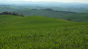 Typical Tuscan landscape with the green hills. Typical Tuscan landscape with the beautiful green hills stock footage