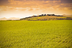 Typical tuscan landscape Italy - Pisa - toned image Royalty Free Stock Photos