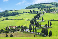 Typical Tuscan landscape with rolling hills and winding road Stock Photo