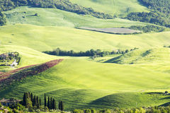 Typical  tuscan landscape in spring Royalty Free Stock Photos