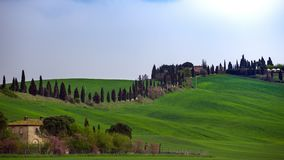 Typical Tuscan landscape. A view of a villa on a hill and green fields at sunny day. province of Siena. Tuscany, Italy Stock Photo