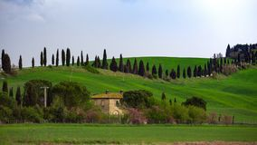 Typical Tuscan landscape. A view of a villa on a hill and green fields at sunny day. province of Siena. Tuscany, Italy Royalty Free Stock Photos