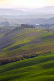 Typical Tuscan landscape. A view of a villa on a hill and green fields at sunny day. province of Siena. Tuscany, Italy Royalty Free Stock Images