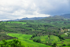 Typical Tuscan views. This photo was taken in the valley of the Orcia (Val d'Orcia). Typical Tuscan views of farms, fields, vineyards Stock Image