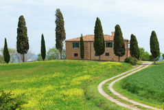 Typical Tuscany farmhouse. With cypresses Stock Photos