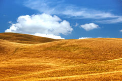 Typical Tuscany landscape Royalty Free Stock Photo