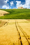 Typical Tuscany landscape Royalty Free Stock Images