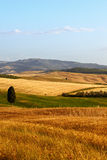 Typical Tuscany landscape Stock Photography
