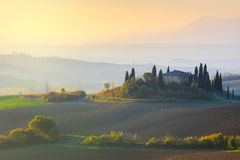 Typical Tuscany landscape at gentle sunrise light Stock Images