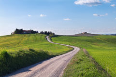 Typical Tuscany landscape and road , green hills springtime Stock Images