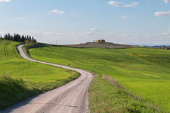 Typical Tuscany landscape and road , green hills springtime Royalty Free Stock Image