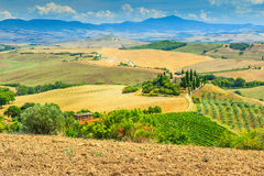 Typical Tuscany landscape,San Quirico d'Orcia,Italy,Europe Stock Image