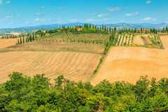 Typical Tuscany landscape,Siena region,Italy,Europe Stock Photography