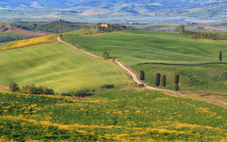 Typical Tuscany landscape springtime,Gladiator road. In Italy,Europe Royalty Free Stock Photo