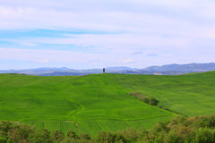 Typical Tuscany landscape springtime Royalty Free Stock Images
