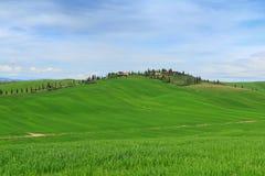 Typical Tuscany landscape springtime Royalty Free Stock Photo