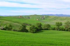 Typical Tuscany landscape springtime Royalty Free Stock Photos