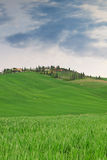 Typical Tuscany landscape springtime. In Italy,Europe Royalty Free Stock Photography