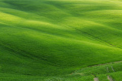Typical Tuscany landscape springtime. In Italy,Europe Stock Photos