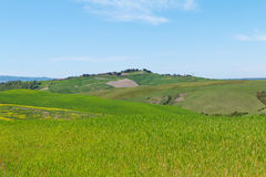Typical Tuscany landscape springtime. In Italy,Europe Royalty Free Stock Image