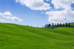 Typical Tuscany landscape springtime at sunrise. In Italy,Europe Stock Image