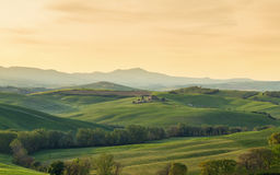 Typical Tuscany landscape springtime at sunrise. In Italy,Europe Royalty Free Stock Photo