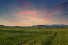 Typical Tuscany landscape springtime at sunset. In Italy,Europe Royalty Free Stock Images