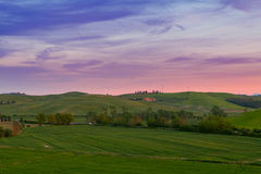 Typical Tuscany landscape springtime at sunset. In Italy,Europe Royalty Free Stock Image