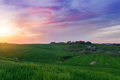 Typical Tuscany landscape springtime at sunset. In Italy,Europe Stock Photography