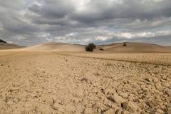 Typical Tuscany landscape Royalty Free Stock Image