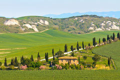 Typical Tuscany landscape view Stock Photography
