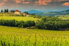 Fantastic vineyard landscape with stone house, Tuscany, Italy, Europe royalty free stock image