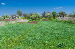 Typical Ukrainian rural landscape at spring season Stock Images