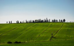 Typical Val d`Orcia landscape in the Tuscany, Italy. Landscape format royalty free stock image
