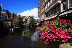 Typical view of Amsterdam Royalty Free Stock Images