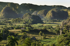 Typical view of Valle de Vinales with mogotes in Cuba Stock Photography