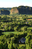 Typical view of Valle de Vinales with mogotes in Cuba Royalty Free Stock Images
