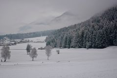 A typical village and the forest while it is snowing in Trentino Alto Adige. The wonderful world of winter forests royalty free stock image