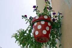 Typical wall planter pots in andalusian village Royalty Free Stock Images