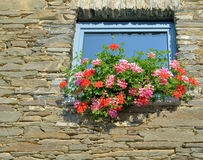 Typical walloon window Royalty Free Stock Images