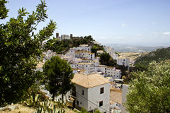 Typical white andalusian village. Typical street in white andalusian village in malaga Stock Photo